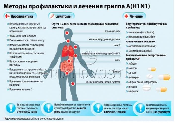 свиной грипп2