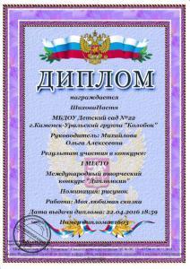 Шихова Настя дипломкин
